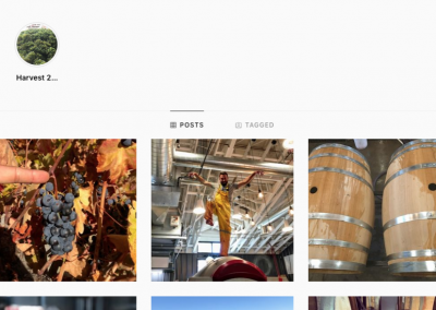 More Carboy Winery Social Media